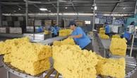 Tăng sức cạnh tranh cho ngành cao su