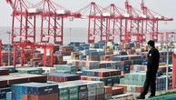 Những container hàng hóa ở một bến cảng ở Thượng Hải, Trung Quốc - Ảnh: Reuters.