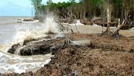 Quản lý các chính sách về biến đổi khí hậu trong thực thi và hợp tác khu vực là một trong những chủ đề được tập trung thảo luận tại Diễn đàn Phát triển bền vững Việt Nam 2019. Ảnh: Thanh Đức