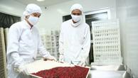Công ty CP Dược liệu Trung ương 2 trúng thầu hơn 4.200 tỷ đồng tại 1 gói thầu. Ảnh: Lê Tiên