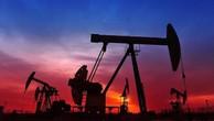 Nhà đầu tư thận trọng, giá dầu chững ở đỉnh 3 tháng