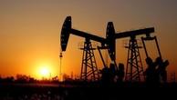 Giá dầu trượt khỏi đỉnh do sản lượng của Mỹ lập kỷ lục