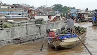 Quy hoạch vùng Đồng bằng sông Cửu Long: Phát huy tối đa lợi thế so sánh