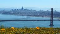 Top 10 thành phố có mức lương bình quân cao nhất thế giới
