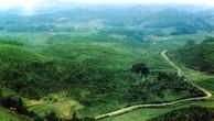 Đấu giá quyền sử dụng đất tại huyện Cẩm Khê, Phú Thọ