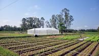 Hỗ trợ doanh nghiệp chuyển giao, ứng dụng khoa học công nghệ trong nông nghiệp