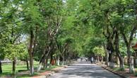 Đấu giá quyền sử dụng đất tại TP Huế, Thừa Thiên Huế