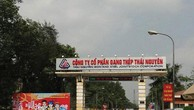 Gang thép Thái Nguyên: SCIC rút vốn, Thái Hưng nâng sở hữu
