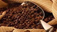 Đấu giá thành công hơn 3,7 triệu cổ phần của Cà phê Phước An