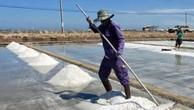 Ninh Thuận điều chỉnh đưa 422 ha đất làm muối ra khỏi dự án. Ảnh minh họa: TTXVN