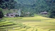 Đấu giá quyền sử dụng đất tại huyện Bảo Yên, Lào Cai