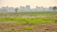 Hà Nội chưa giải quyết dứt điểm tồn đọng khiếu nại về đất đai từ 2009-2013