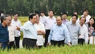 Thủ tướng Nguyễn Xuân Phúc thăm các cánh đồng mẫu, trồng các giống lúa mới của một trung tâm nghiên cứu nông nghiệp tại An Giang, ngày 14/3/2017. Ảnh: VGP