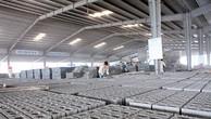 Nhu cầu sử dụng gạch không nung ngày càng tăng do xu hướng phát triển Công trình Xanh tại Việt Nam.