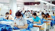 Doanh nghiệp Việt tận dụng được gì từ chương trình hỗ trợ của APEC?