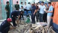 Hải quan TP. Hồ Chí Minh: Phát hiện hàng hóa vi phạm lên tới trên 100 tỷ đồng
