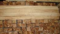 Đấu giá gỗ xẻ nhóm III tại Kon Tum