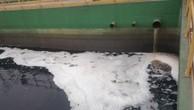 Bộ Tài nguyên và Môi trường yêu cầu Formosa phối hợp với các cơ quan khoa học nghiên cứu phương án xả nước thải bề mặt thay cho phương án xả ngầm ra biển như hiện nay.