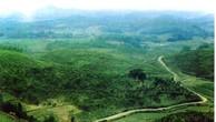 Đấu giá quyền sử dụng đất ở tại huyện Cẩm Khê, Phú Thọ