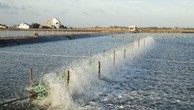 Điều tra nguồn lợi thủy sản vùng nội đồng