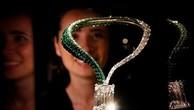 Viên kim cương màu D nằm chính giữa chuỗi vòng cổ chế tác bằng ngọc lục bảo và 18 viên kim cương.