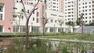 Trong khi nhà ở xã hội cho công nhân không thể phát triển được thì hàng chục ngàn căn hộ tái định cư lại bị TP.HCM bỏ hoang phí.
