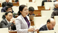 Đại biểu Quốc hội tỉnh Quảng Ninh Đỗ Thị Lan phát biểu ý kiến. Ảnh: TTXVN