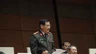 Đại biểu Nguyễn Hữu Cầu phát biểu. - Ảnh: VGP