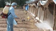 Hỗ trợ 3 tỉnh Thừa Thiên Huế, Quảng Nam và Bình Định phòng, chống dịch bệnh