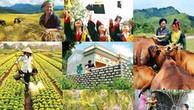 Tạo chuyển biến rõ nét, thực chất thực hiện chương trình về phát triển bền vững