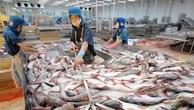 Cổ phiếu 'vua cá tra' lao dốc vì thuế chống bán phá giá