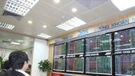 IPO hơn 9 triệu cổ phần, Xây dựng Vạn Tường thu về 154 tỷ đồng