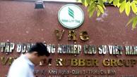 Điều chỉnh cơ cấu cổ phần Công ty mẹ -VRG