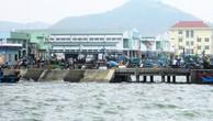 Lựa chọn được 4 nhà thầu thi công Bến cá Nhơn Lý