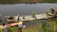 Cá sông Hậu sẽ không chết vì nhà máy giấy?