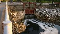 Buông lỏng hậu kiểm về môi trường