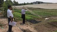 Cơ quan thi hành án đấu giá đất của dân quá rẻ: Câu chuyện chưa có hồi kết