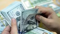 Biến động tỷ giá trong tháng 11 chỉ là tạm thời