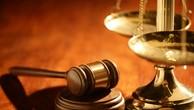Cựu sếp Vina Megastar lĩnh án 12 năm tù