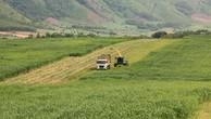 Gỡ khó để hút đầu tư vào nông nghiệp