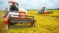 Bổ sung loại hợp đồng dự án PPP trong nông nghiệp