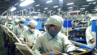 DN CNTT Nhật Bản quan tâm thị trường Việt Nam