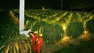 EVN SPC thực hiện nhiều dự án điện nông thôn