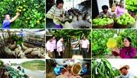 Tín dụng chính sách đã hỗ trợ hơn 2 triệu người ở Tây Nam Bộ