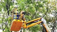 27 gói thầu dịch vụ công ích vệ sinh môi trường giai đoạn 2017 - 2020 của Hà Nội có tổng giá trị khoảng 5.155 tỷ đồng. Ảnh: Lê Tiên