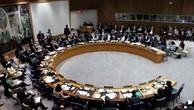 Một phiên họp Hội đồng Bảo an tại trụ sở Liên Hợp Quốc, New York, Mỹ. Ảnh:Reuters.