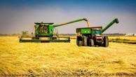 Gạo Mỹ sẽ được xuất khẩu sang Trung Quốc lần đầu tiên.
