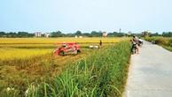 Nhiều chính sách khuyến khích DN đầu tư vào nông nghiệp