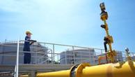 """Sản phẩm ống thép bọc ống của PV COATING và sản phẩm ống thép của PV PIPE đã được Bộ Công Thương xác nhận """"chưa có DN khác đăng ký sản xuất được"""". Ảnh: Lê Tiên"""