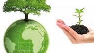 Sắp chọn nhà thầu tư vấn đánh giá tác động môi trường dự án 7.200 tỷ